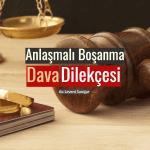 Anlaşmalı Boşanma Dava Dilekçesi
